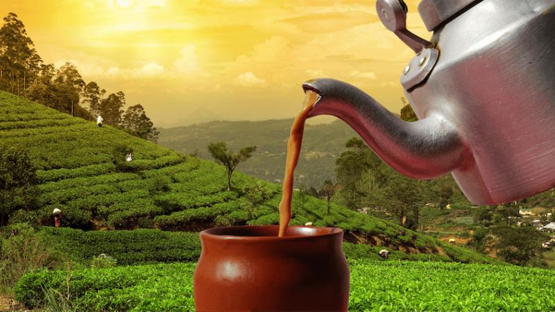 assam tea post header