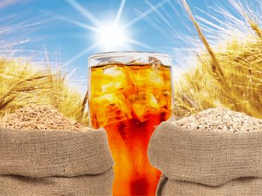barley tea