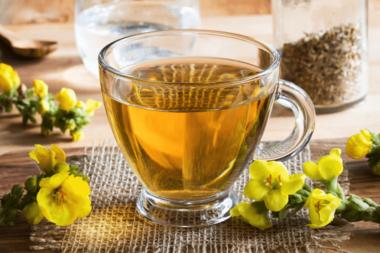 mullein tea_header
